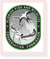 florida-fish